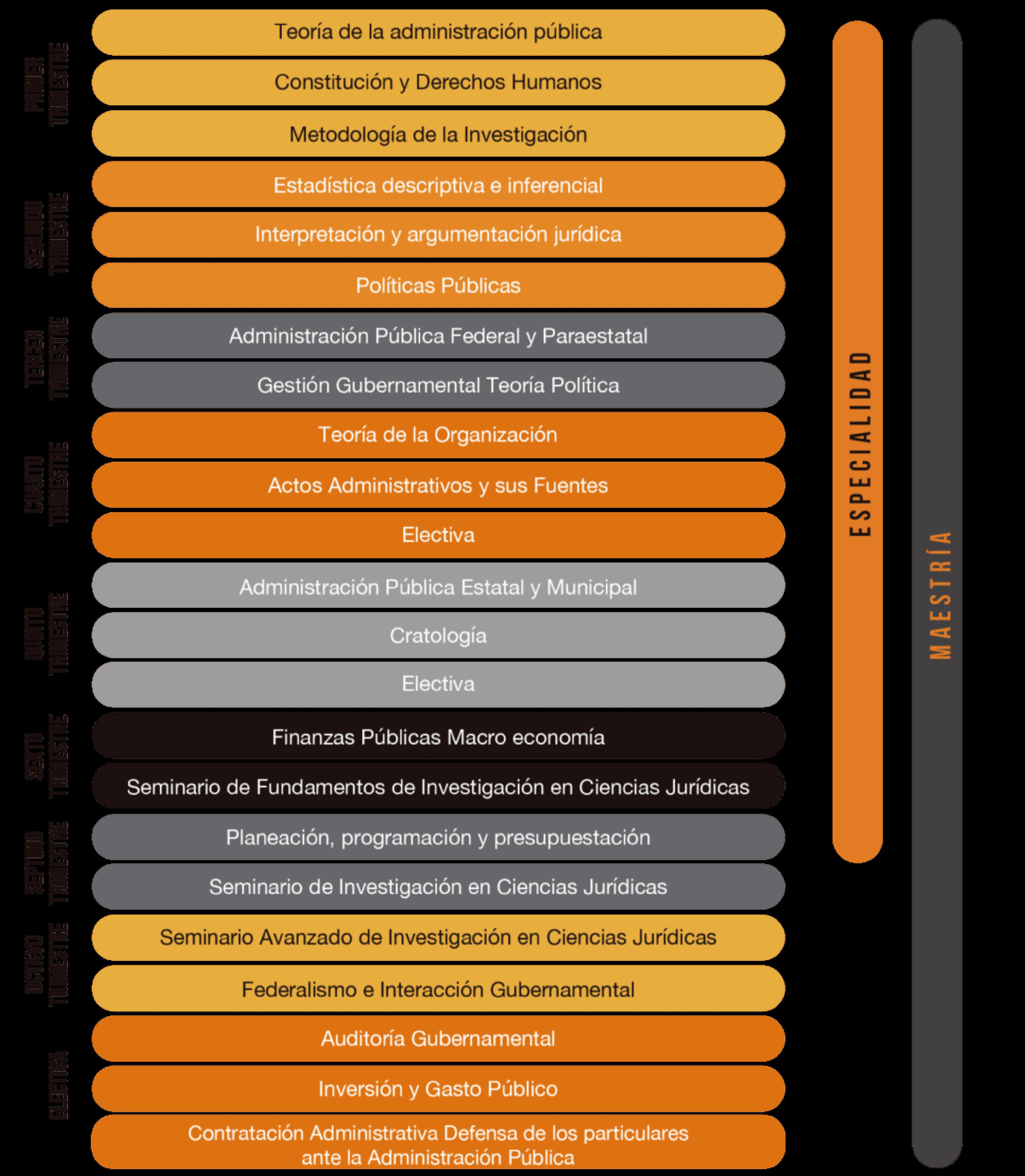 APP-SITE-V1-Plan-Estudio-MAP