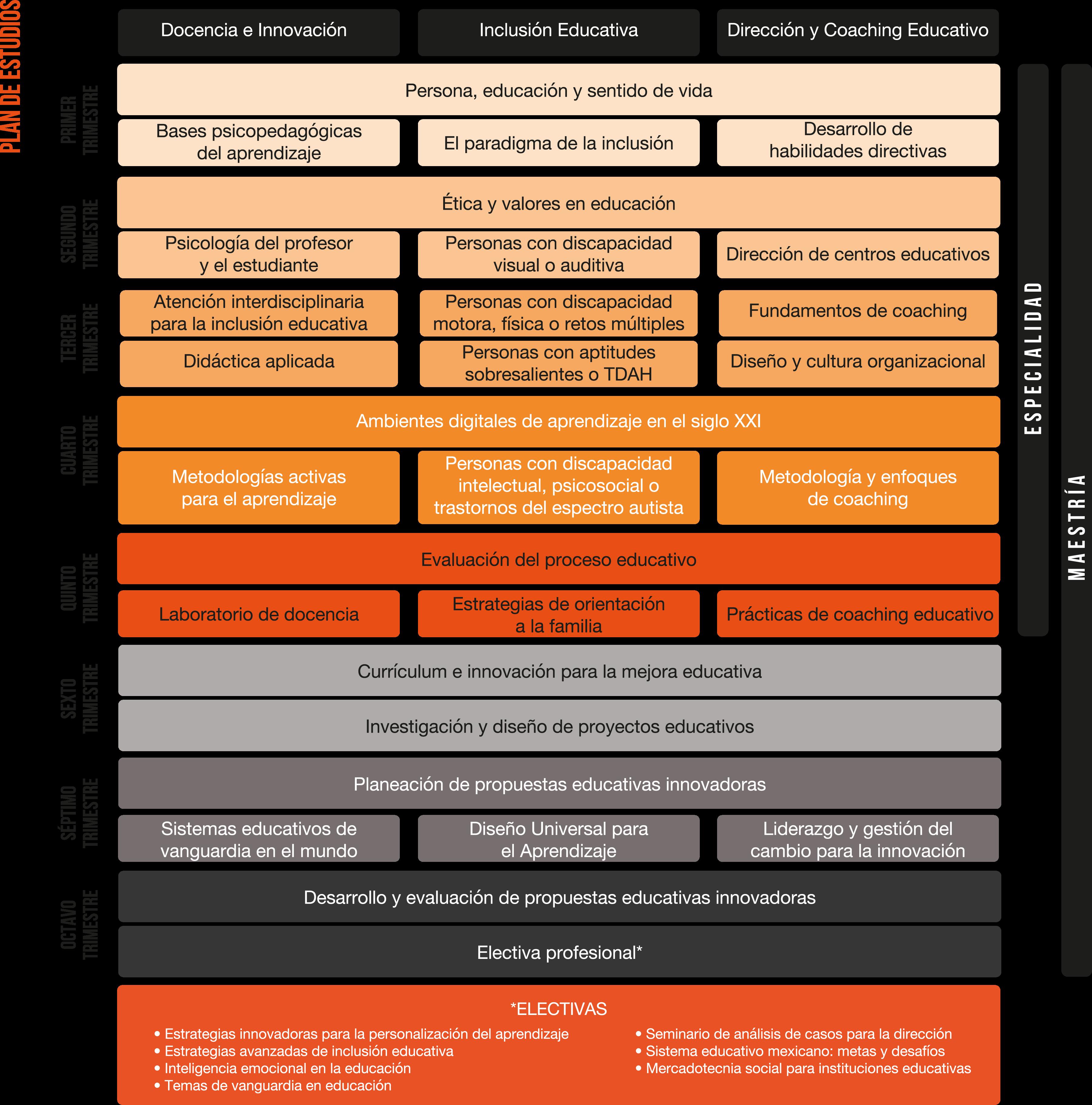 APP-SITE-V1-Plan-Estudio-MED