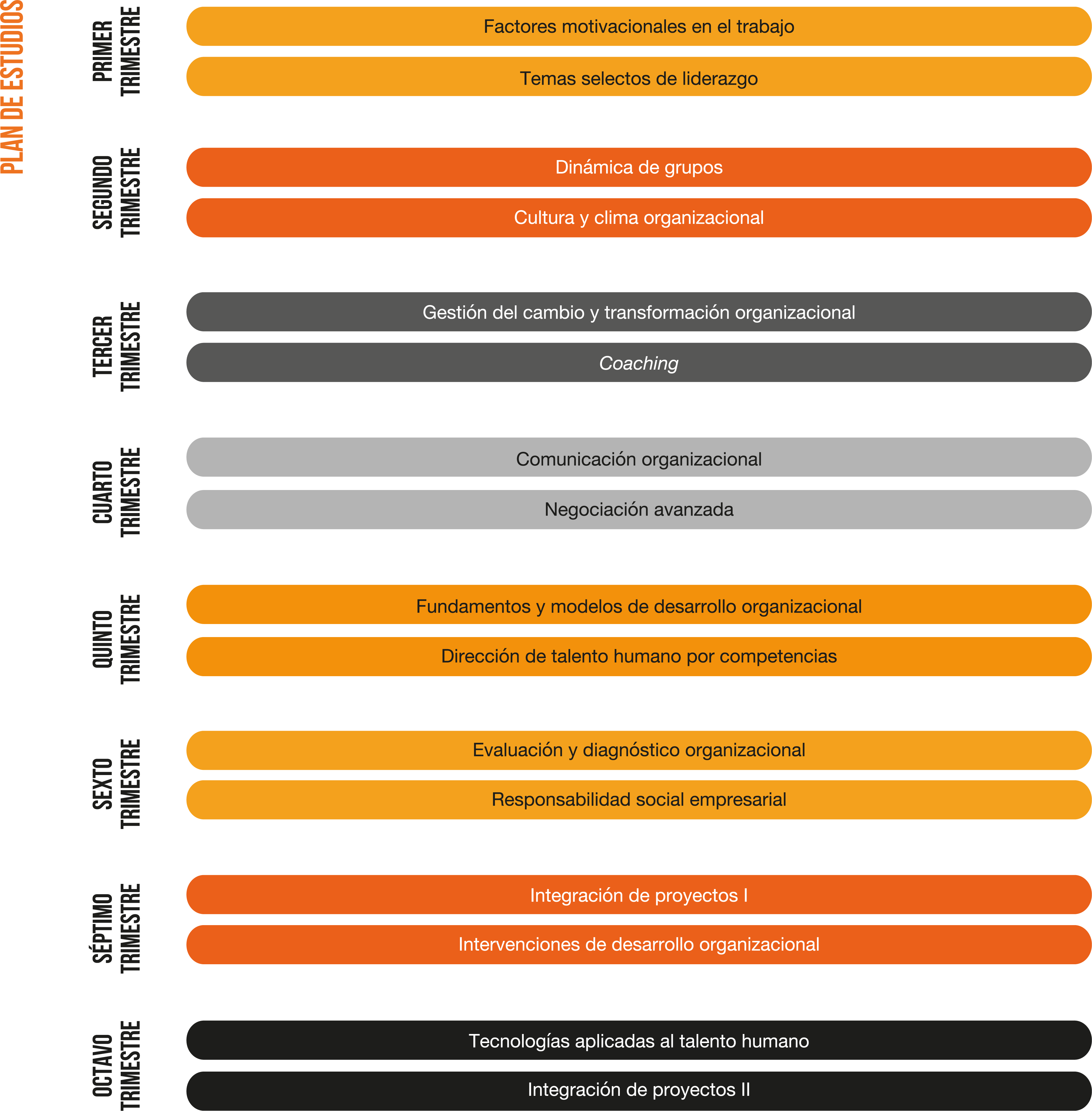 APP-SITE-V1-Plan-Estudio-MaestríaMDCH